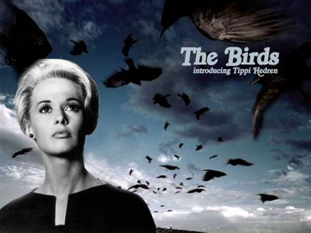 thebirds-hitchcock011.JPG