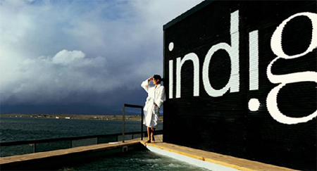 indigo9.jpg
