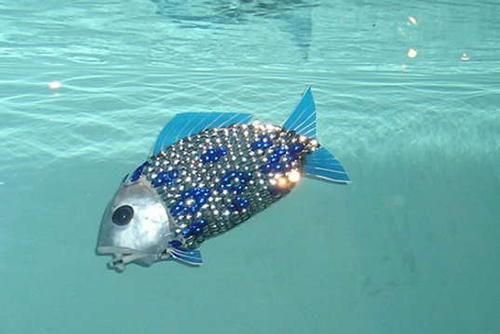 roboticfish-5.jpg