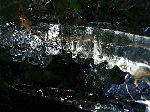 Oruga de cristal de Brandan