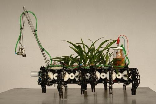 planta2estudio
