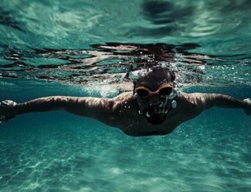 El universo subacuático en fotografías