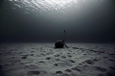 Fotografía submarina lecho marino
