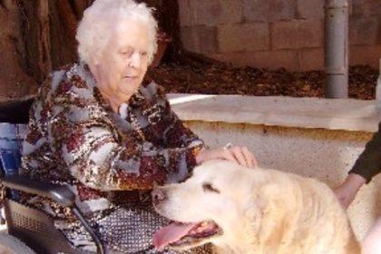 perro-terapia-ancianos