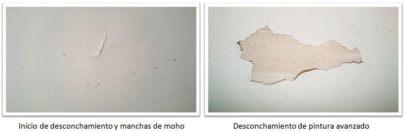 La pintura en el ba o desconchamiento en falso techo aqua - Pintura techo bano ...