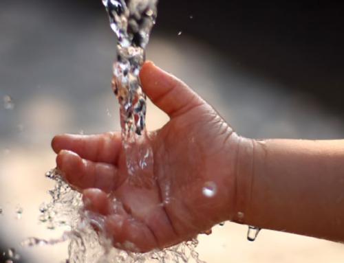 7 maneras de ahorrar agua de forma sencilla en tu hogar
