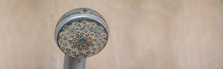 Consejos para limpiar el plato de ducha securibath for Como limpiar el plato de ducha